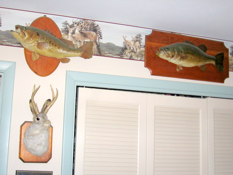 The true value of mounted fish and game ohio game for Ohio fish and game